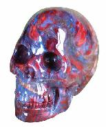 "1.6"" Pietersite Skull Carving"