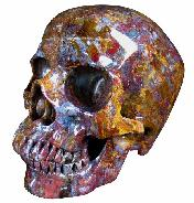 LIFESIZED Pietersite Carved Crystal Skull, Gemstone